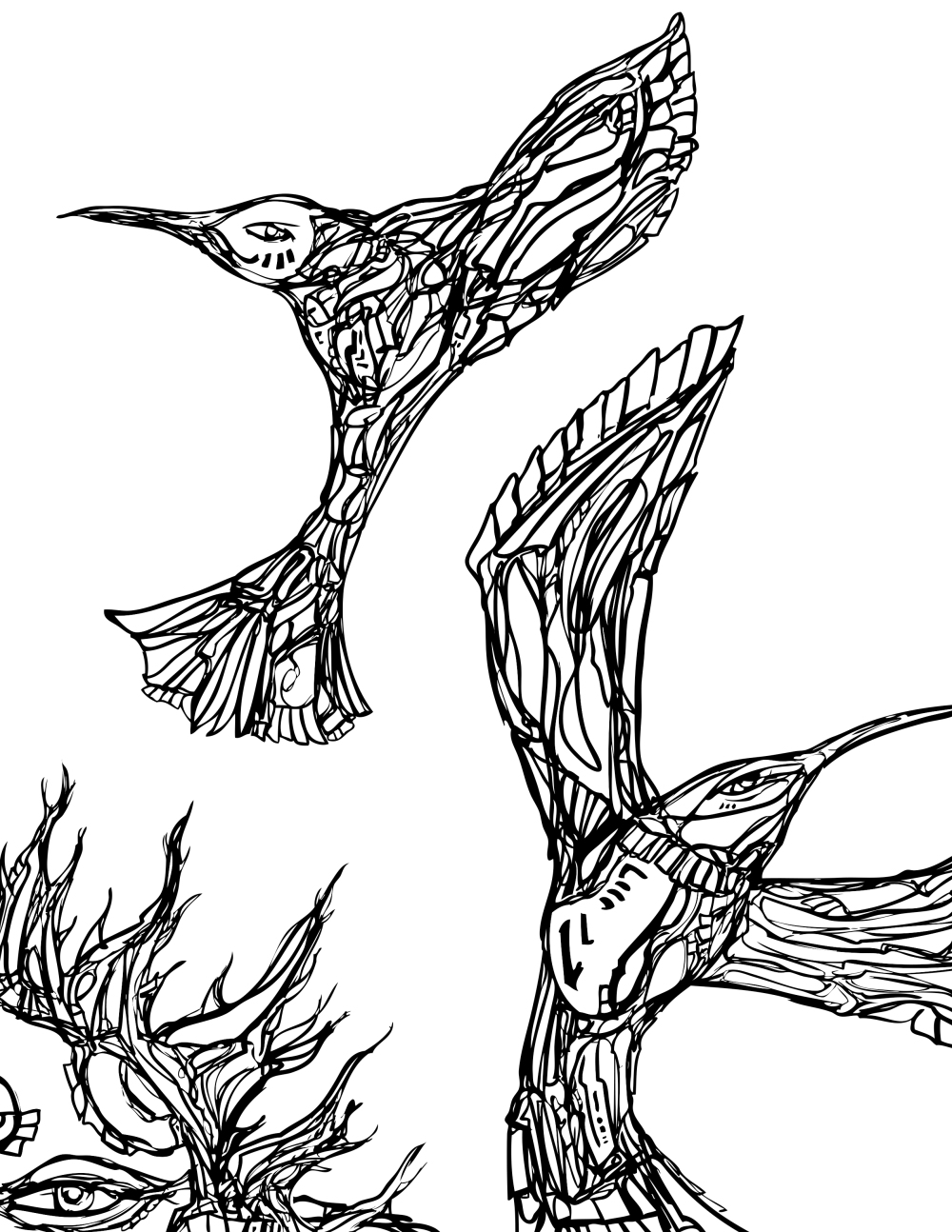 NEW CREATE SPACE WATERHUMMINGBIRD HOUSE COLORING BOOK